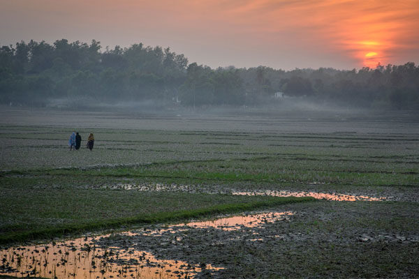 Bangladesh wetlands