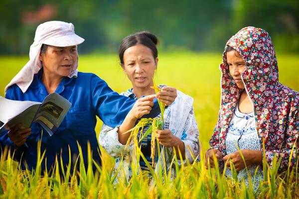 women in farm field receiving training