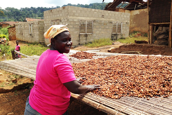 Ghanaian woman sorting cocoa pods