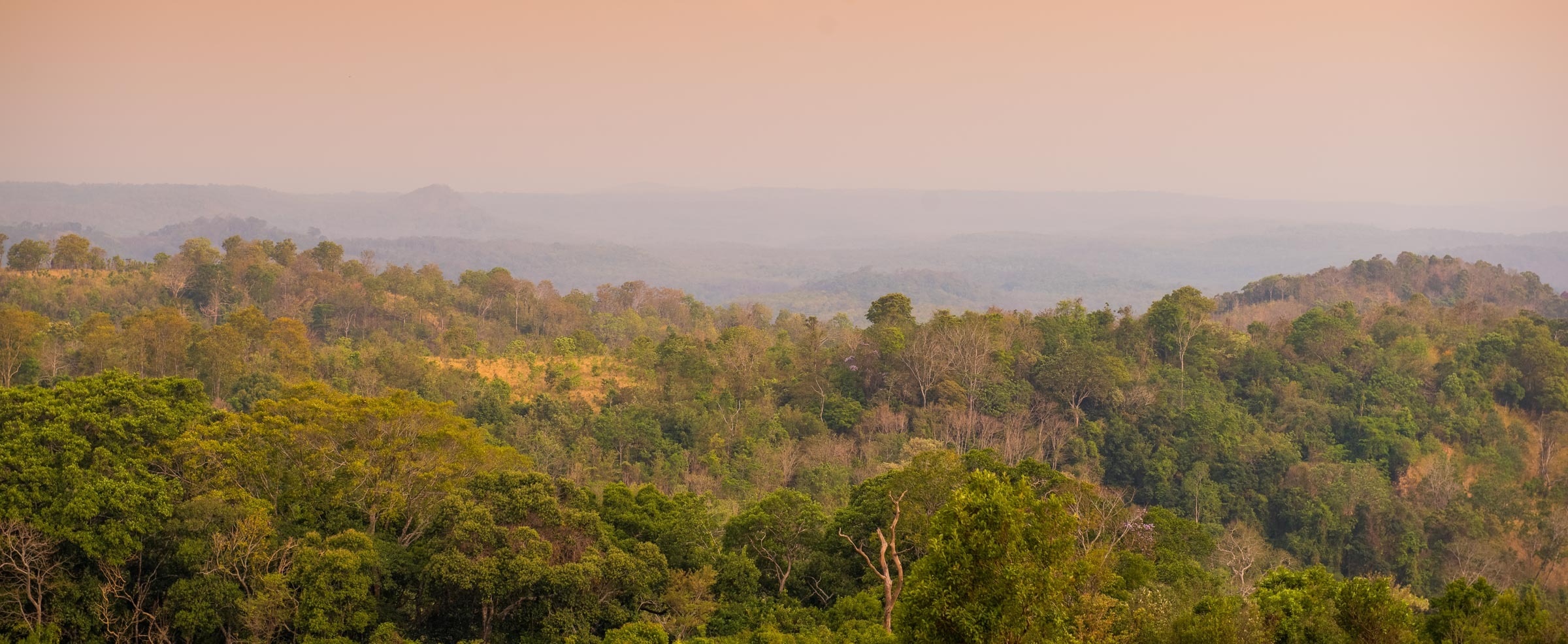 The Mondulkiri Protected Forest is located in eastern Cambodia and is part of maybe the largest protected area complex in southeast Asia.