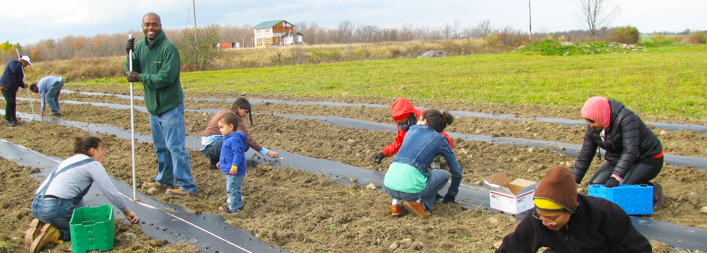 People planting vegetables