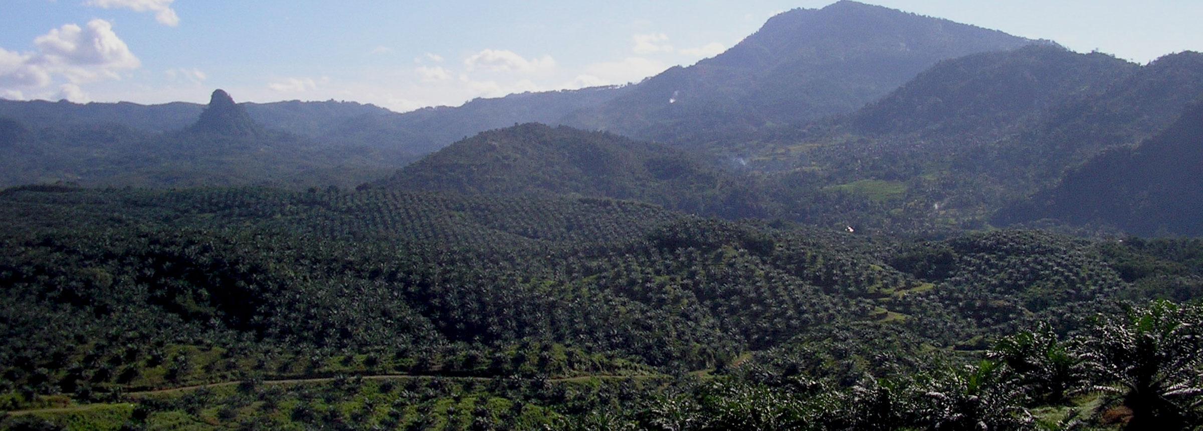 Indonesia landscape