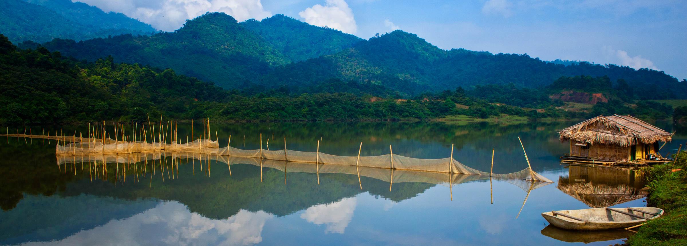 Vietnam forests