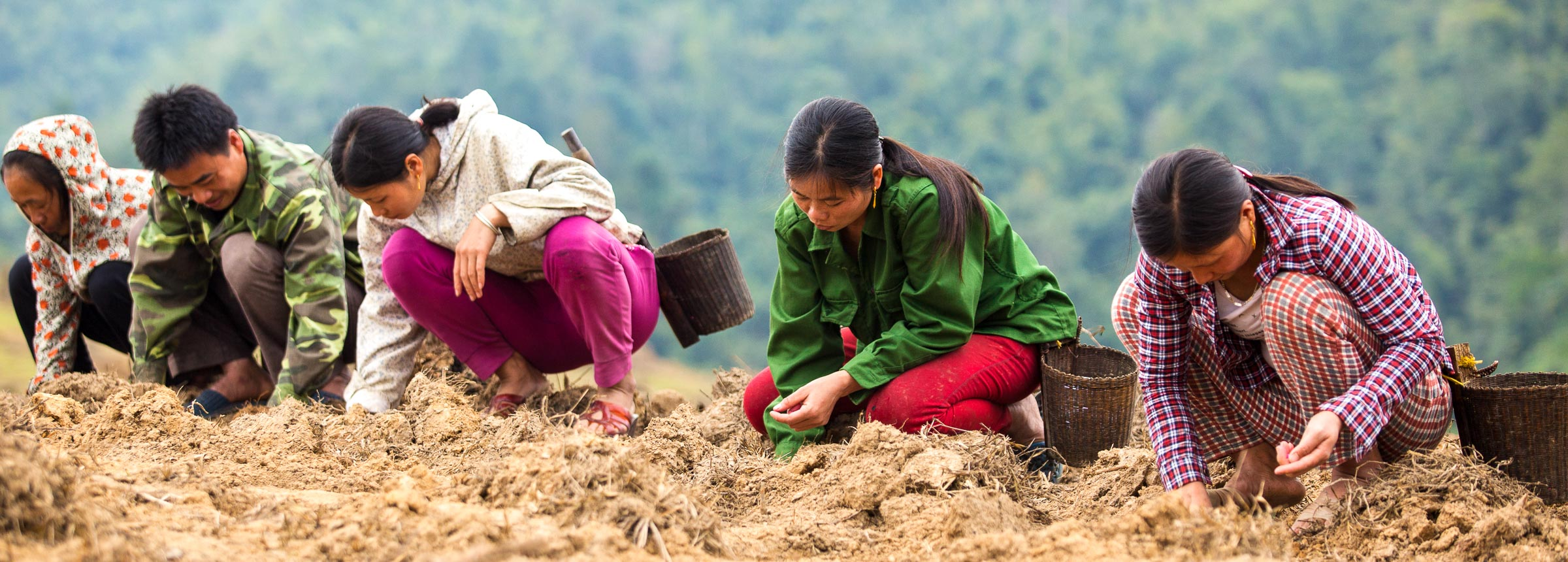 People planting seeds