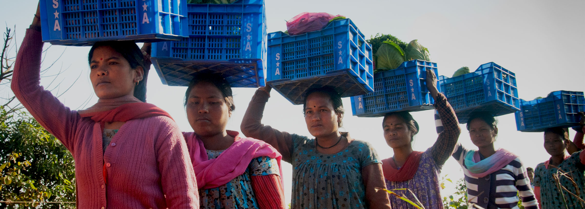 Nepali women carrying crates of vegetables