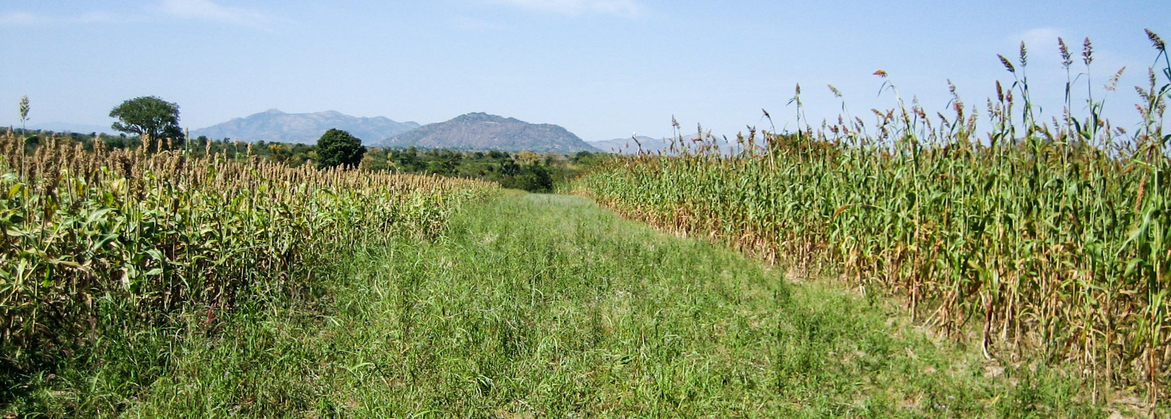 Nigeria landscape