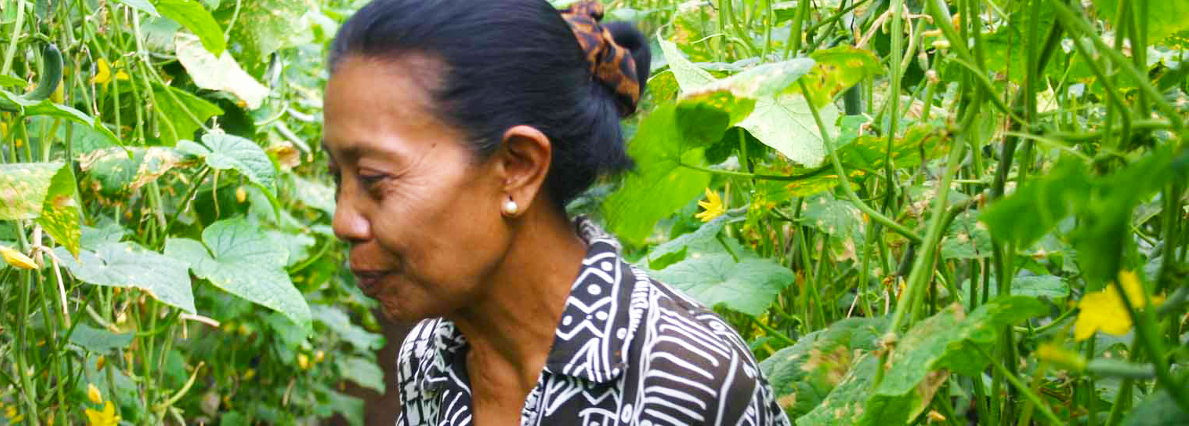 Indonesian woman farmer