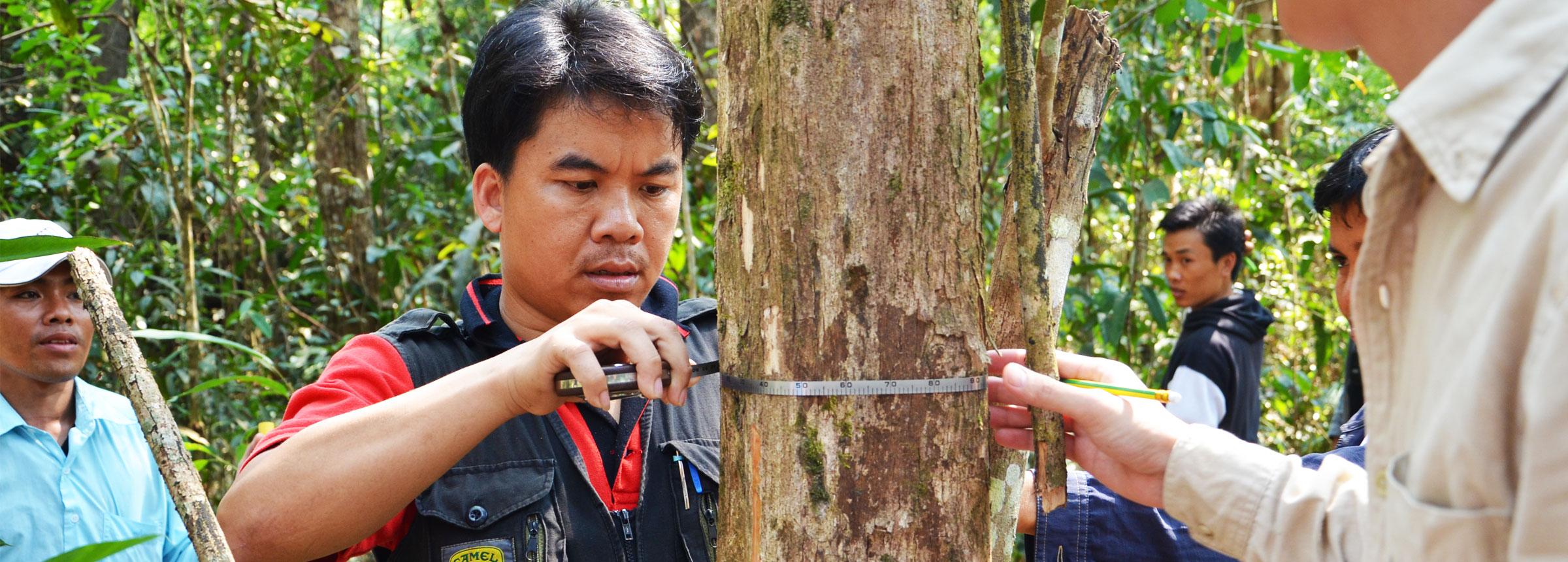 Biomass assessment training