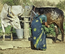 Multiple-Use Water Services for the Poor: Assessing the State of Knowledge