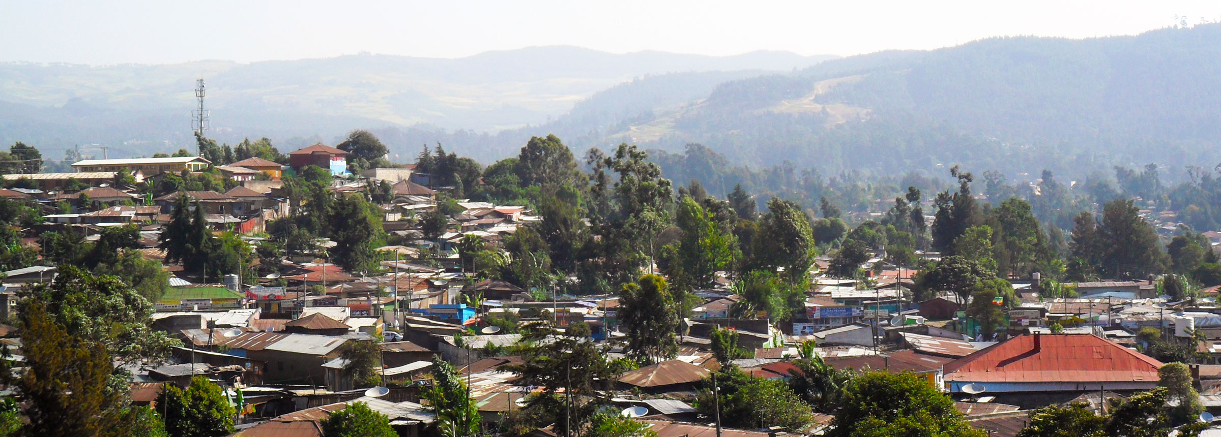 Ethiopian skyline