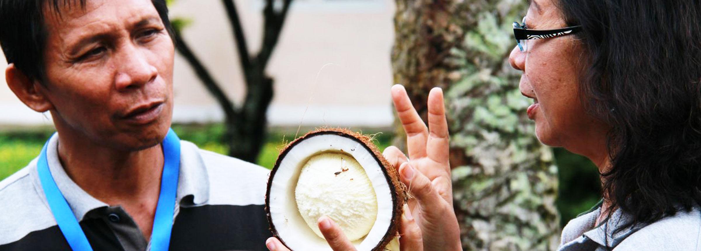 Woman trains coconut farmer