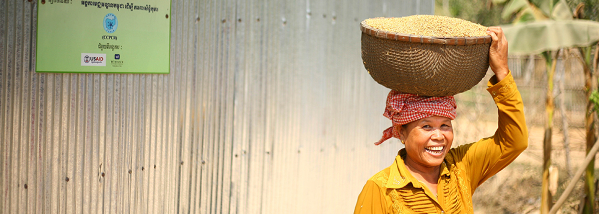 Woman carries rice on head.