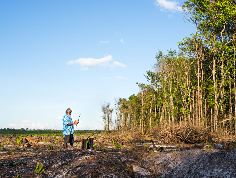 Lahkan Budhan on Land Creek Farm, Linden Highway. Budhan has a farming concession and cleared land to plant coconut palm trees. (Photo: Lucas Foglia)
