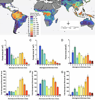 Benchmark Map of Forest Carbon Stocks in Tropical Regions Across Three Continents