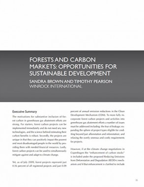 Forest and Carbon Markets