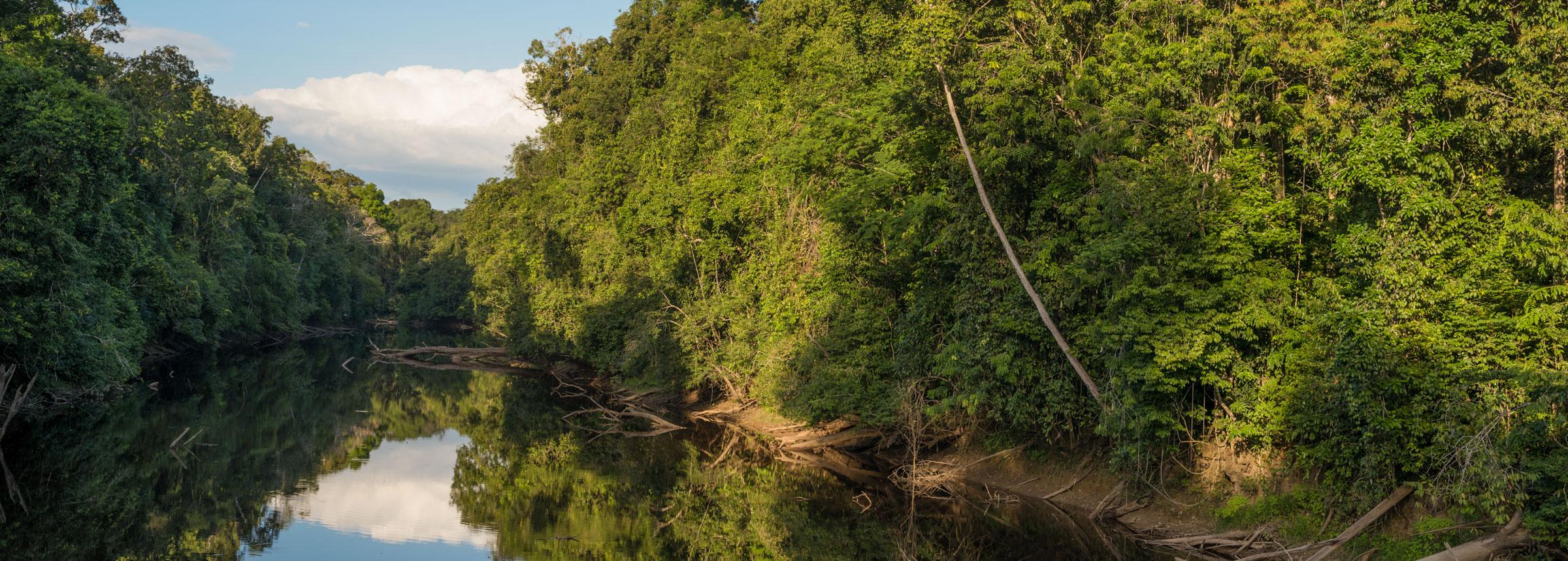 Guyana landscape