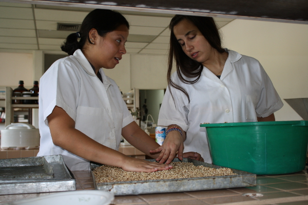 Volunteer Eliana Pinilla (right) and a CENTA technician test the best quantity of sorghum flour to mix with wheat for artisan bakeries countrywide.