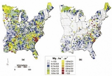 Spatial Patterns Of Aboveground Production And Mortality Of Woody Biomass For Eastern US Forests