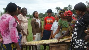 F2F volunteer Virginie Zoumenou discusses yam processing with women in Nigeria