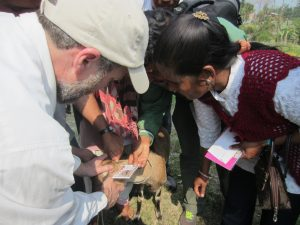 Daniel Flaherty teaches farmers how to use the FAMACHA card to detect parasites in goats