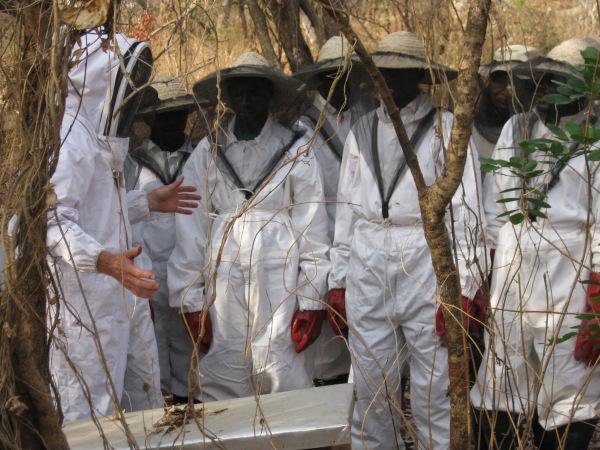 Doug Johnson training beekeepers in Nigeria