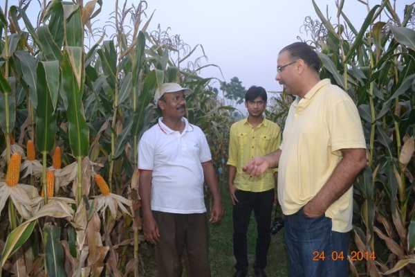 Visiting a maize research field