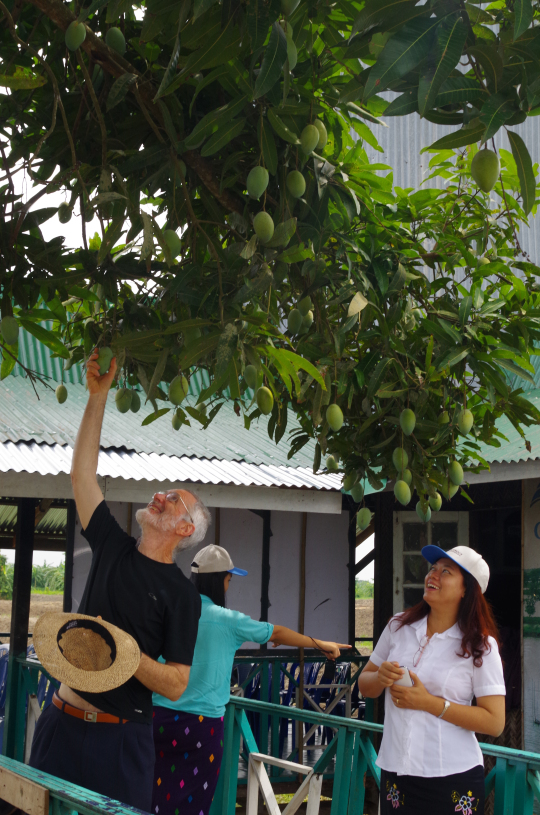 On a farm tour prior to the training, Hugh tests overhanging fruit for ripeness