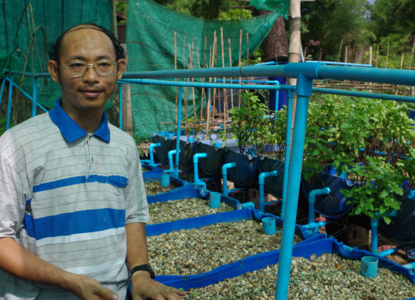 U Saw Hei Moo at his aquaponic farm near Yangon, Burma