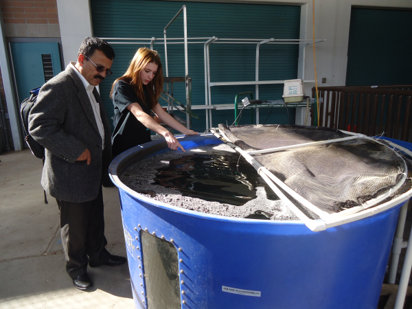 Dr. Duwadi and an AZ high school student inspect a student-managed aquaculture tank