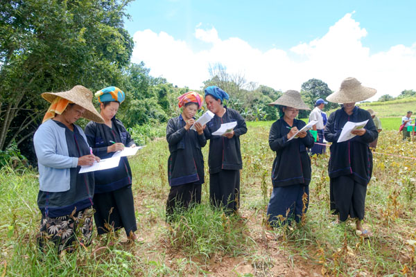 Dani farmers learning about new soy varieties, Southern Shan, Myanmar