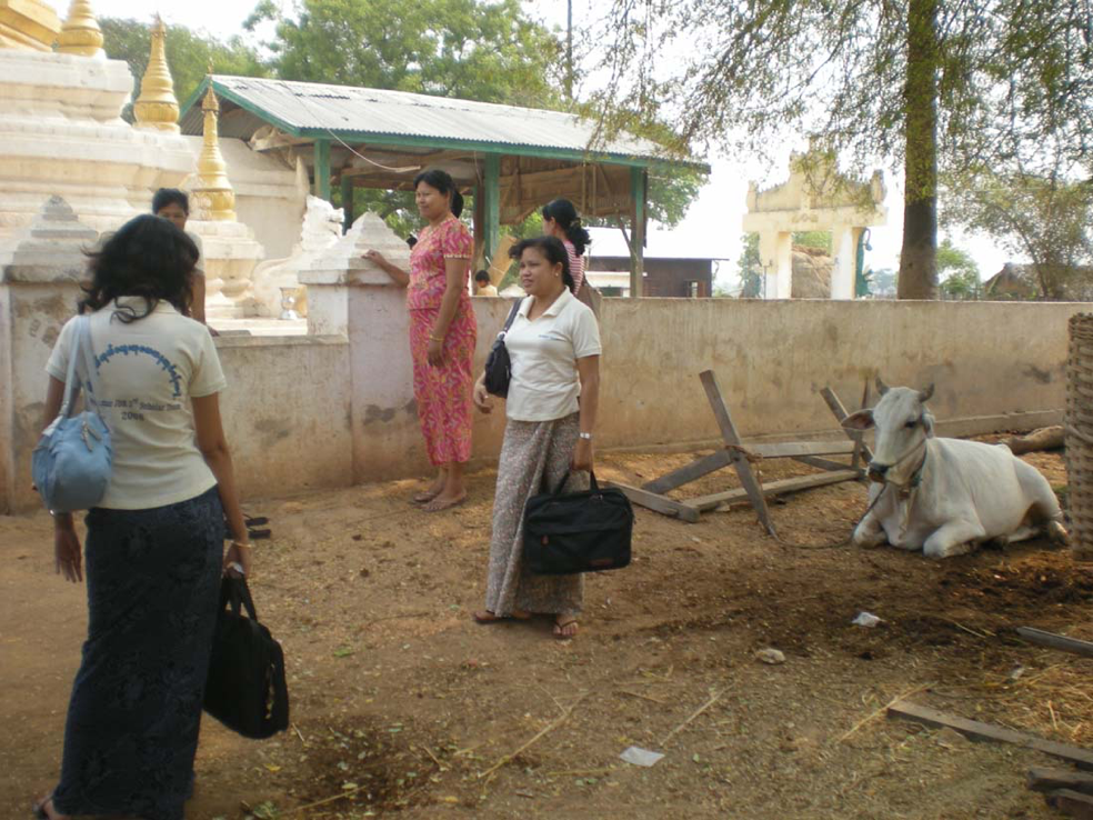The JDR 3RD Burma Avian Influenza research team surveying villagers in Yangon