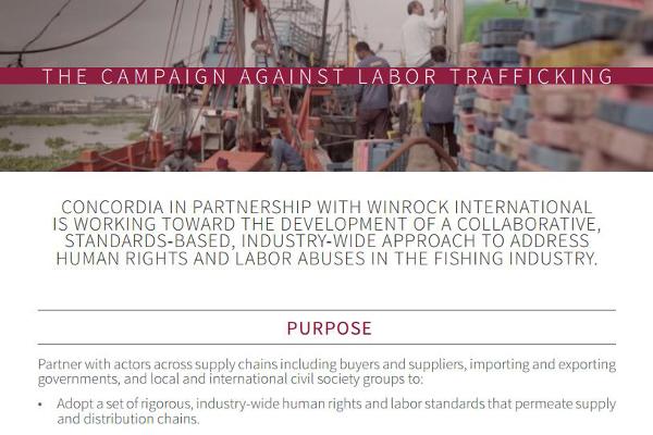 Download the Winrock Concordia Partnership Brochure
