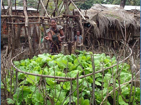 lavina-venance-small-scale-organic-vegetable-producer-usaid-copy