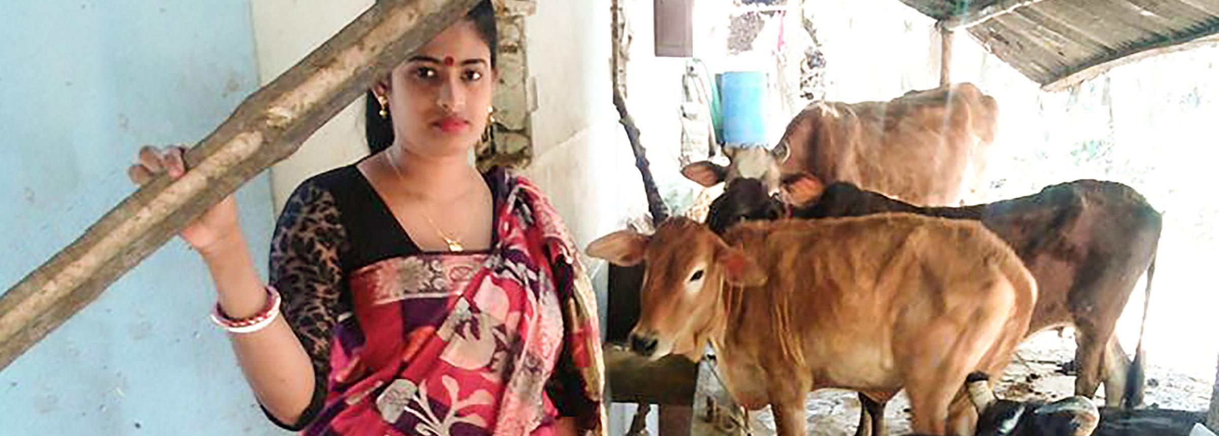 Winrock International Raising Cattle Improving Lives