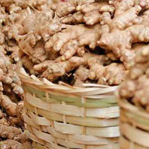 Burmese Ginger Farmers Go 'All Natural'
